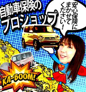 くるま村の安心保険
